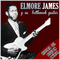 Elmore James - Historia del Blues en America. Elmore James y Su Bottleneck Guitar