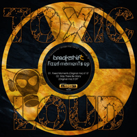Breakshift - Fixed Moments EP