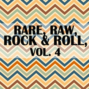 Various Artists - Rare, Raw, Rock & Roll, Vol. 4
