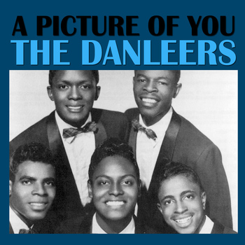 The Danleers - A Picture Of You