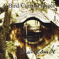 Henry Adam Curtis - Briarcombe (A Bird / Curtis Project)