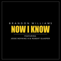 Jesse Boykins III - Now I Know (feat. Jesse Boykins III & Robert Glasper)