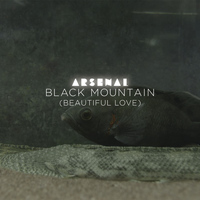 Arsenal - Black Mountain (Beautiful Love) (Radio Edit)