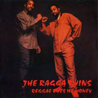 The Ragga Twins - Reggae Owes Me Money