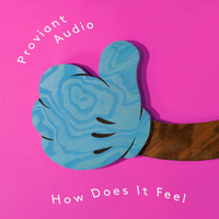 Proviant Audio - How Does It Feel?