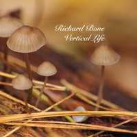 Richard BONE - Vertical Life