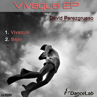 David Perezgrueso - Vivaque EP
