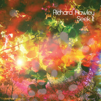 Richard Hawley - Seek It