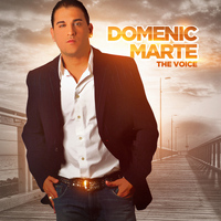 Domenic Marte - The Voice