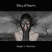 Diary of Dreams - Elegies in Darkness
