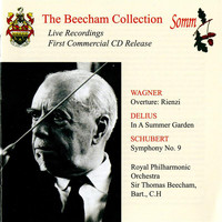 Royal Philharmonic Orchestra - The Beecham Collection: Wagner, Delius & Schubert