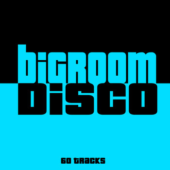 Various Artists - Bigroom Disco - 60 Tracks (Explicit)