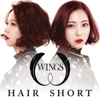 Wings - Hair Short