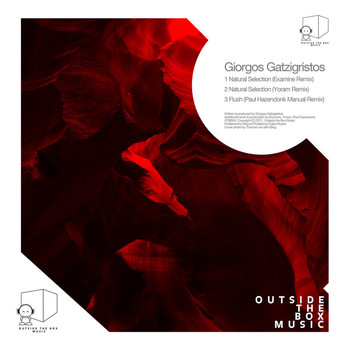 Giorgos Gatzigristos - Natural Selection Remixes