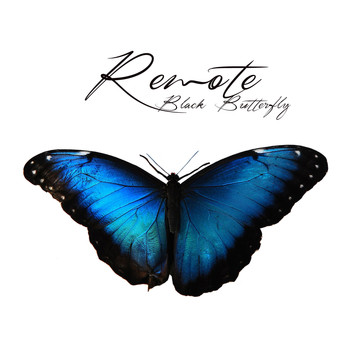 Remote - Black Butterfly