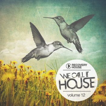 Various Artists - We Call It House, Vol. 12
