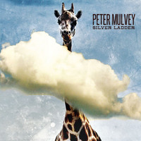 Peter Mulvey - Silver Ladder