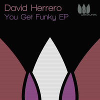 David Herrero - You Get Funky EP