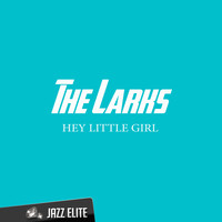 The Larks - Hey Little Girl
