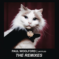 Paul Woolford - Untitled (Call Out Your Name) (Remixes)