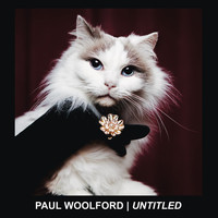 Paul Woolford - Untitled (Call out Your Name)