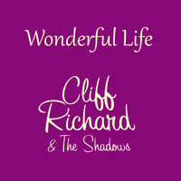 Cliff Richard And The Shadows - Wonderful Life