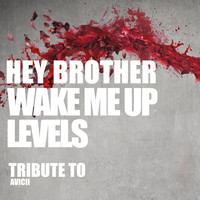 Dj Kee - Hey Brother, Wake Me Up, Levels: Tribute to Avicii