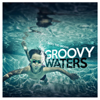 Groovy Waters - Into the Groove