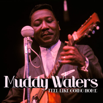 Muddy Waters - Feel Like Going Home
