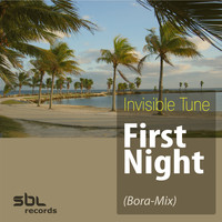 Invisible Tune - First Night (Bora-Mix)