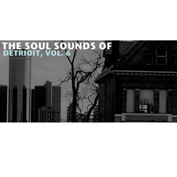 Various Artists - The Soul Sounds of Detroit, Vol. 6