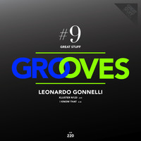 Leonardo Gonnelli - Great Stuff Grooves, Vol. 9