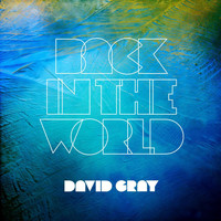 David Gray - Back in the World