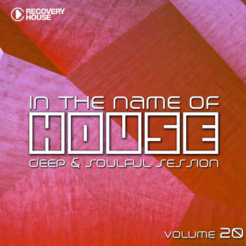 Various Artists - In the Name of House #20