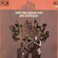 Sonny Terry - Back Country Blues