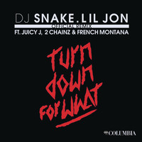 DJ Snake & Lil Jon feat. Juicy J, 2 Chainz, and French Montana - Turn Down for What (Official Remix [Explicit])