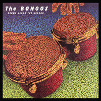 The Bongos - Drums Along The Hudson