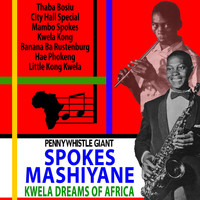 Spokes Mashiyane - Pennywhistle Giant Spokes Mashiyane: Kwela Dreams of Africa