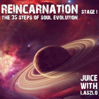 Stereo Juice - Reincarnation. The 35 Steps of Soul Evolution