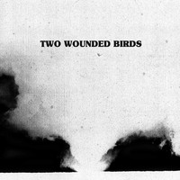 Two Wounded Birds - Two Wounded Birds