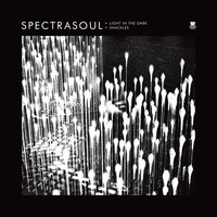 Spectrasoul - Light in the Dark / Shackles