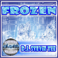 D.J. Stevie Tee - Frozen