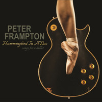 Peter Frampton - Hummingbird in a Box
