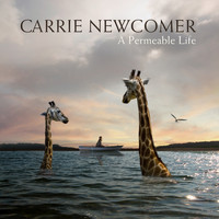 Carrie Newcomer - A Permeable Life