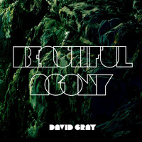 David Gray - Beautiful Agony