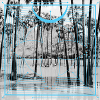 Four Tet - Jupiters / Lion