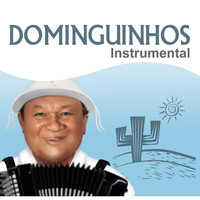 Dominguinhos - Dominguinhos Instrumental