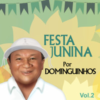 Dominguinhos - Festa Junina por Dominguinhos, Vol. 2