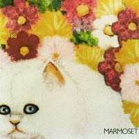 Marmoset - Today It's You