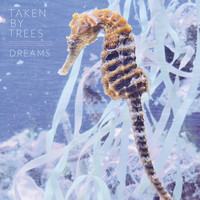 Taken By Trees - Dreams